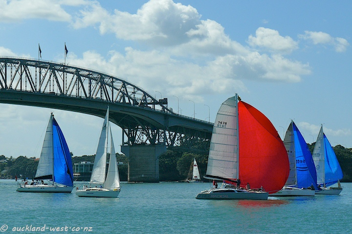 Spinnakers under the Harbour Bridge