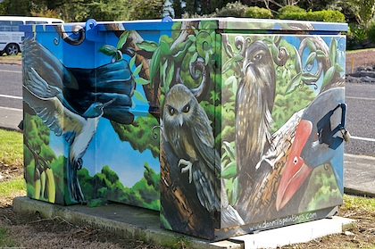Kingfisher, Morepork, Harrier, Pukeko