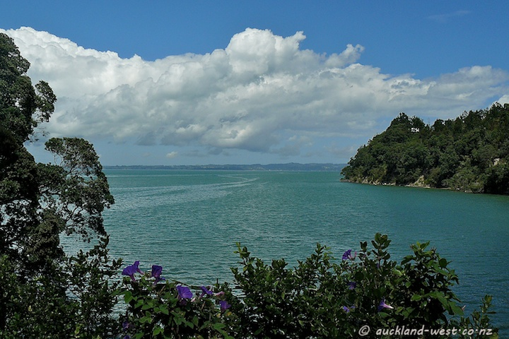 Manukau Harbour, Seen Across the Bay