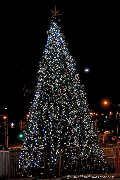 Christmas Tree, New Lynn