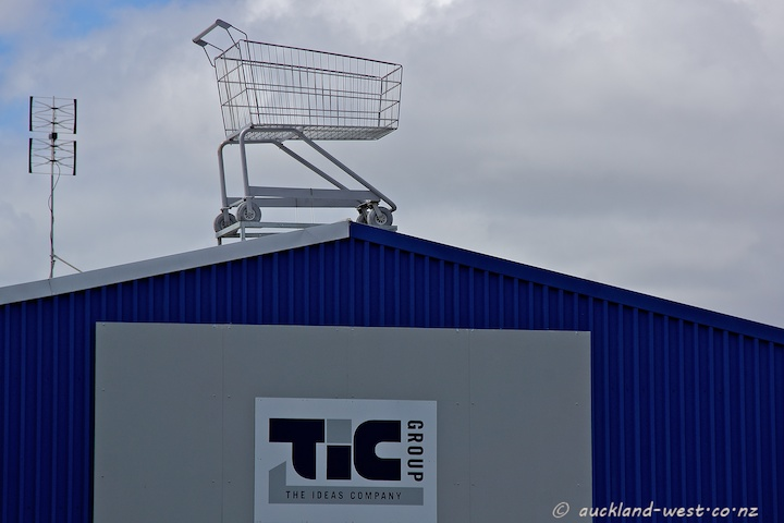 Giant Shopping Trolley