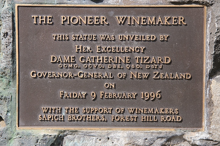 The Pioneer Winemaker