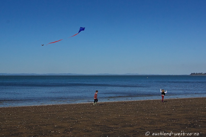 Kite, Cornwallis Beach