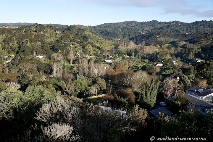 Hills of the Waitakere Ranges