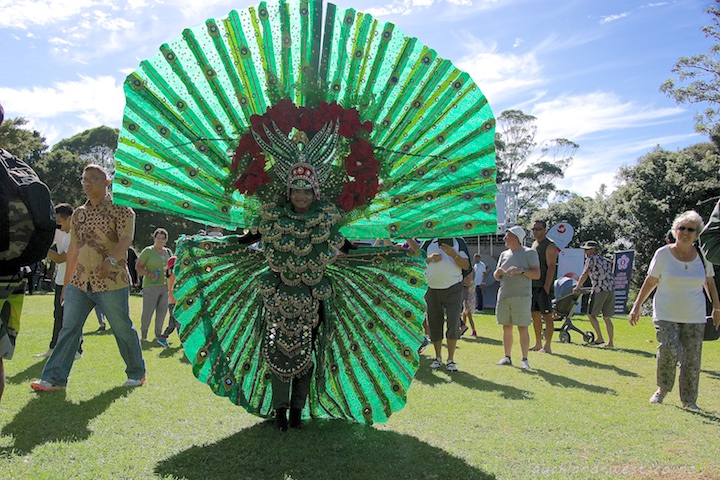 Peacock Dancer