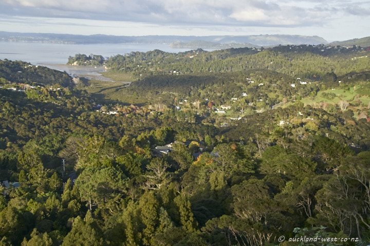 A Titirangi Morning