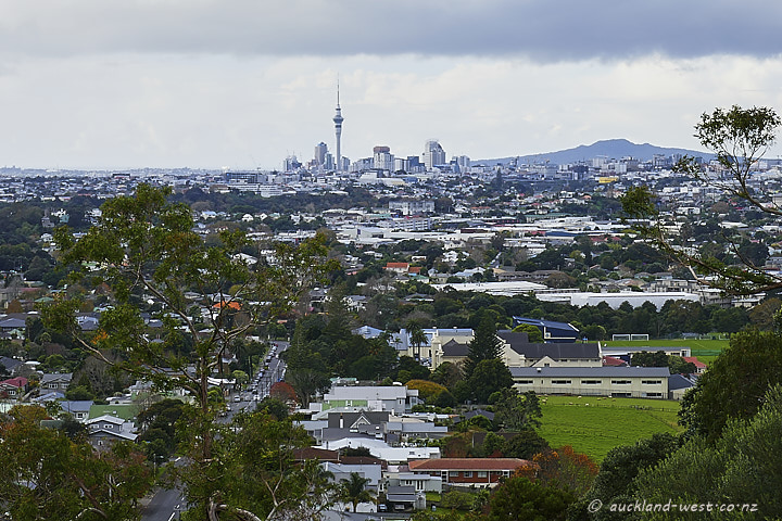View from Mount Albert